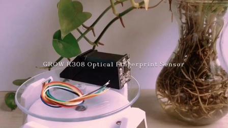 Grandir R308 du module d'empreintes digitales optique UART avec capacité de stockage 500