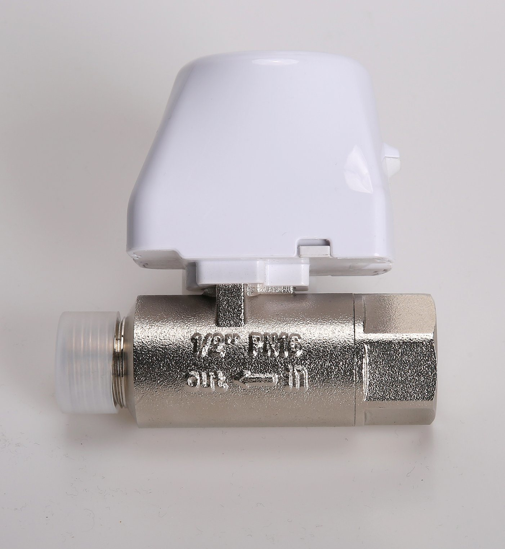 """DN25 2 vie 1"""" pollici Ottone maschio Filettatura controllo elettrico Valvola a sfera motorizzata ad acqua"""