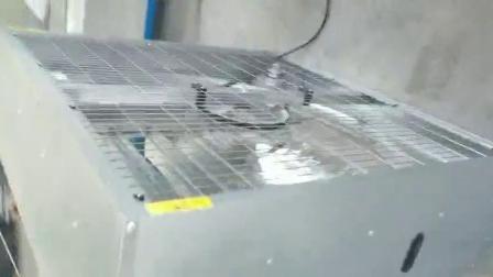 Granja avícola ventilación Ventilador de martillo pesado