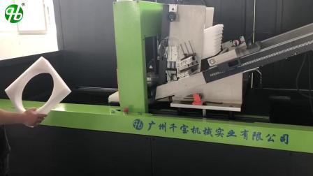 Высокая скорость автоматической подачи ЭПЕ XPE EPP EPS машина для ламинирования