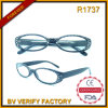 R1737 Twinkling Frame & Plastic Reading Glases