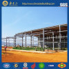 Prefabricated Warehouse/Steel Structure Warehouse (SSW-14302)