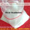 Acadesine CAS 2627-69-2 for Accelerate Fat Burning 100% Pure Aicar Pharmaceutical Raw Material