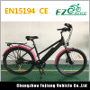 Enduro City Passenger Electric Bicycle with LED Display for Women
