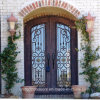 Eyebrow Top Wrought Iron Front Door for Villa (UID-D036)