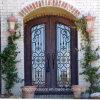 Eyebrow Top Wrought Iron Front Door for Villa (UID-D036)