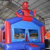 Cartoon Inflatable Bouncer Castle for Amusement