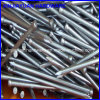 50X2.8mm Polish Surface Fillet Head Bullet Head Nail
