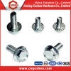 China Supplier Customed Flange Head Screw with Serration