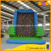 New Design Climbing Wall Inflatable Rock Climbing Game (AQ1906)