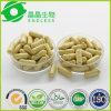 Top Quality Tongkat Ali Extract Capsules Men Herbal Product