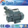 Good Quality Dbz Self-Priming Peripheral Pump