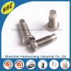 Professional Custom Self Threading Screw for Automobile
