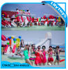 Kids Summer Playground Inflatable Water Park on Land (Lilytoys-wp-043)