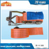 High Quality Ce Approved Rachet Strap&Rachet Tie Down&Cargo Lashing Belt