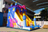 Bright Color Monster Inflatable Bouncer Slide for Kids