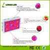 Full Spectrum 300W 450W 600W 800W 900W 1000W 1200W 1500W 2000W Hydroponics LED Grow Light Kits for Greenhouse Plants