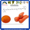 Carrot Concentrate Powder