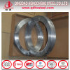 Z120 Galvanized Gi Steel Strips with Low Price