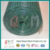 Hot Dipped Galvanized Welded Mesh Roll/ Welded Mesh Roll
