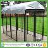 Outdoor Large Double Dog Kennel with Mesh Run Sections