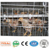 Poultry Farm Equipment or Pullet Chicken Cages System
