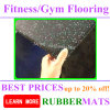 Home Indoor Soft No Smell Gym Flooring