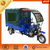 China Motorzied Cargo Three Wheel Motorbike with Cabin