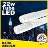 TUV VDE UL cUL Dlc ETL Approved 18W Oval LED Tube Light T8