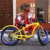 26inch Fat Tire 500W Snow Electric Bike