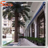 Hotel Decoration Artificial Date Palm Tree