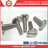 Stainless Steel Slotted Flat Round Head Machine Screw