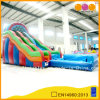 Inflatable Colorful Water Slide with Two-Path and Pool (AQ1089)