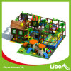 High Quality Fantastic Indoor Playground