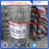 Galvanized Cattle Fence Wire Mesh ISO