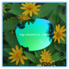 Sunglasses Green Lenses with 100% UV400 Protection