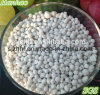 High Quality NPK Compound Fertilizer NPK 10-20-10 with Low Price