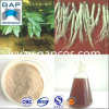 Anti-Senescence -GMP 100% Ginseng Root Extract