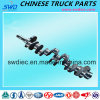 Genuine Chinese Camshaft for Sinotruk Truck Spare Part (Vg1500050096)