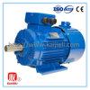 Y2 Cast Iron Asynchronous AC Electric Three Phase Induction Motor
