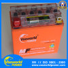 Good Design for Gel Type Motorcycle Battery 12V9ah with Displayer