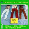 Fashion Pants Used Clothing Leggings in Bulk
