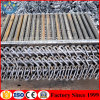 Galvanized Four-Way Ringlock Scaffolding