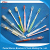 Hot Sale Daily Tooth Brush for Adult