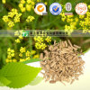 for Cold and Influenza Herb Chinese Thorowax Root