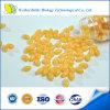 High Quality Coenzyme (CO) Q10 Softgel Capsule 500mg