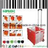 Plastic Folding Shopping Cart (HBE-FP-3)