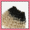 Factory Sale Brazilian Human Hair Curly 14inches Two Tone Color