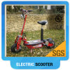 Electric Scooter China Supplier 350W/500W/800W1000W/1300W/1600W