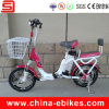 Electric Bike (JSE170)